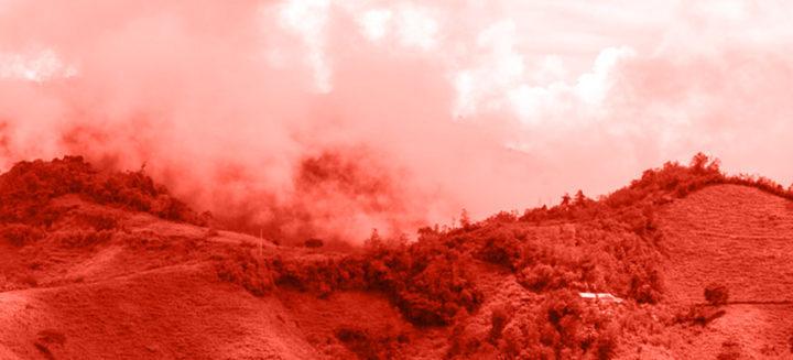 #125 Lehmus Roastery: Peru Cajamarca