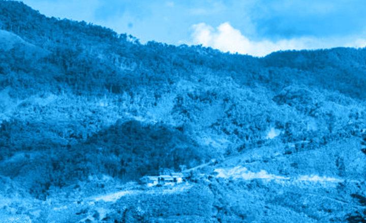 #127 Kahwe: Peru Cajamarca Añas Blue