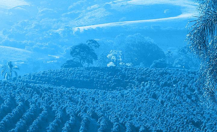 #128 Lehmus Roastery: Kimpinen