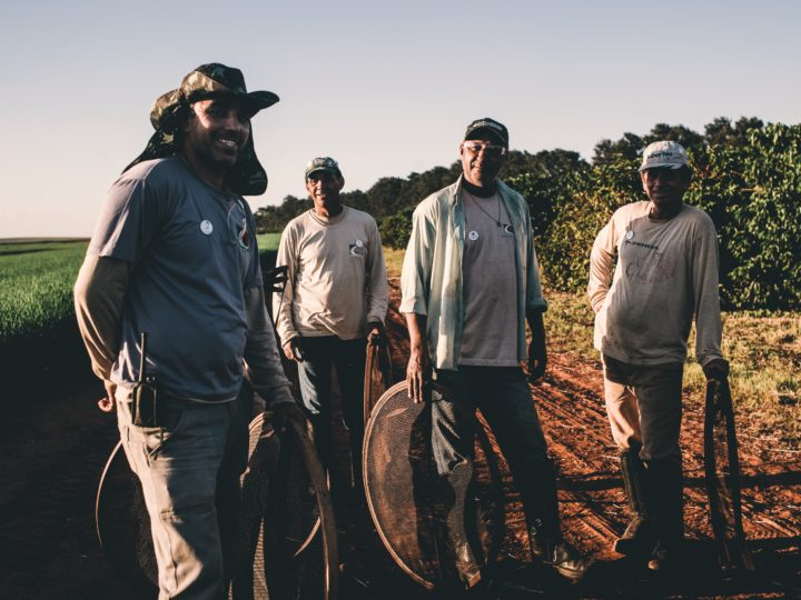 #160 Kahiwa Coffee Roasters: Brazil Fazenda California