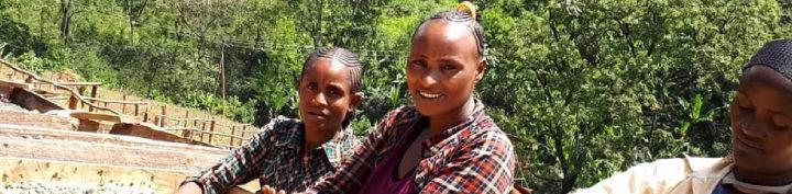 #145 Inka Paahtimo: Ethiopia Worka
