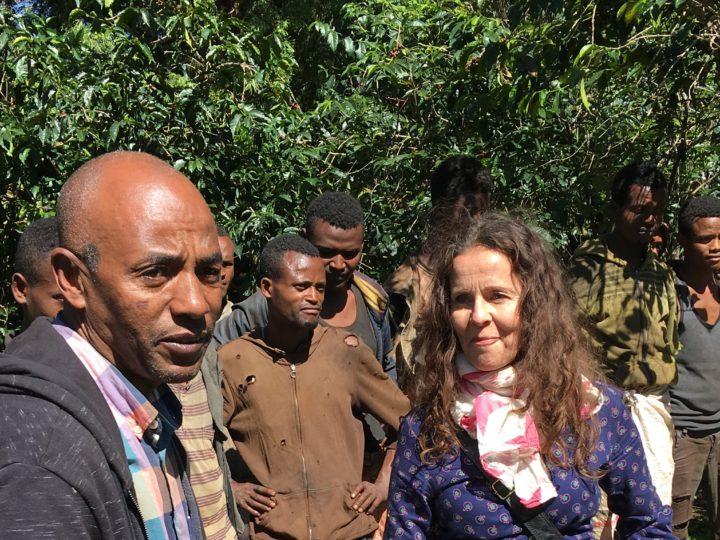#145 Mokkamestarit: Ethiopia Suke Quto Organic 4/5